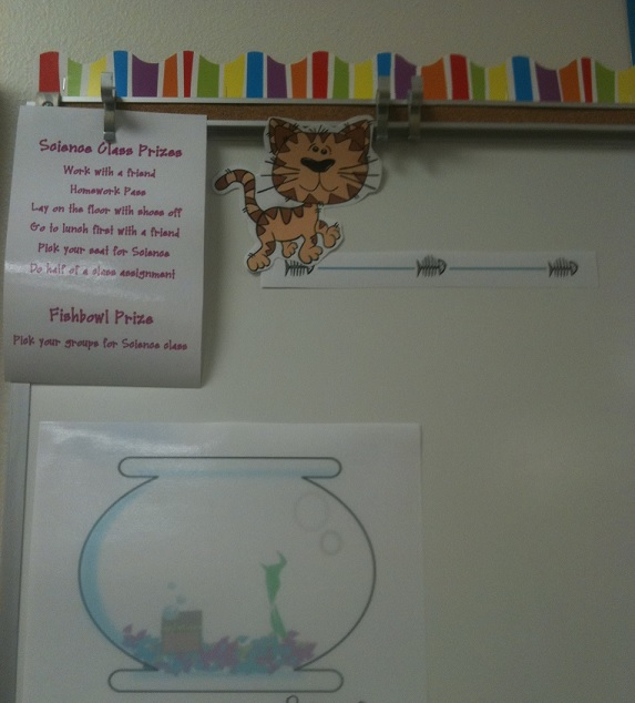classroom behavior system