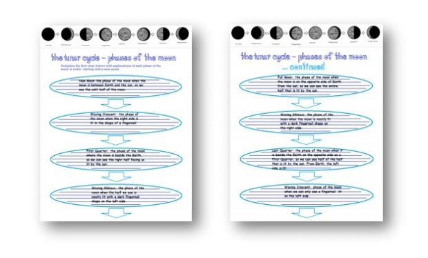 moon graphic organizer