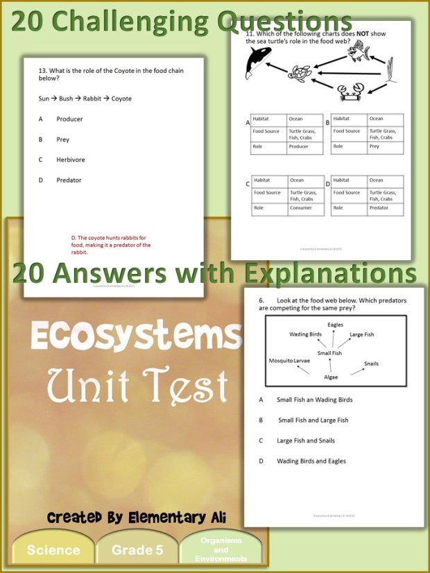 ecosystem unit test collage