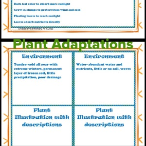 Plant Adaptation Activity