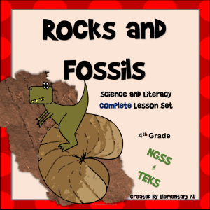 Rocks and Fossils 4th cover